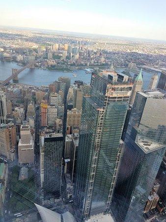 One World Trade Center: 102 Floors Up.