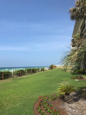 Huntington By The Sea: Beautiful lawn over looking the ocean
