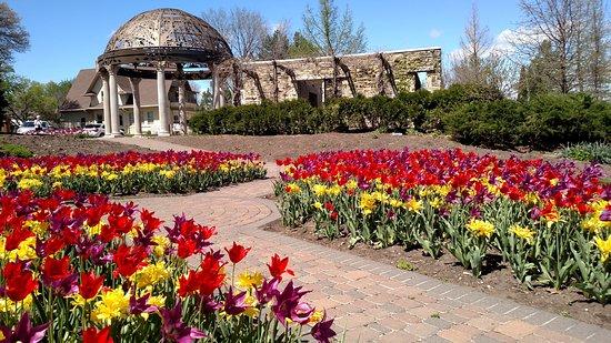 Sunken Gardens: Beautiful
