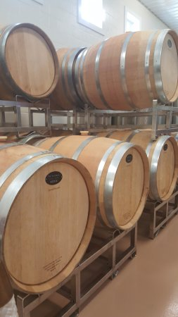 Bowie, MD: Wine barrels at Thanksgiving Farm
