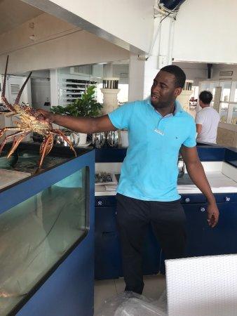 Azzurro Ristorante Italiano Azurros Italian Restaurant Playa Linda Resort 2017