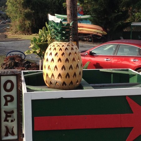 Pineapple Park Hostel - Kona: Did we tell you, we love PINEAPPLES!