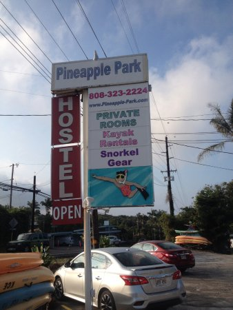Pineapple Park Hostel - Kona: We rent SNORKEL GEAR & KAYAKS. You don't have to stay here to rent them.