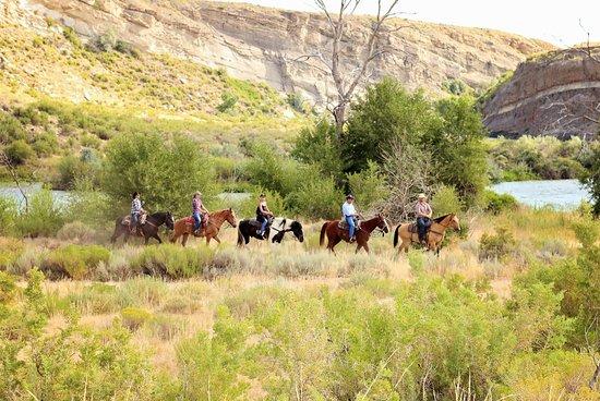 Buffalo Bill Horse Rides