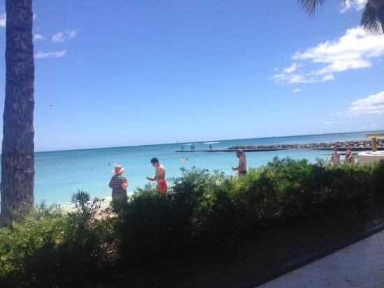 Shore Bird Restaurant & Beach Bar: photo2.jpg