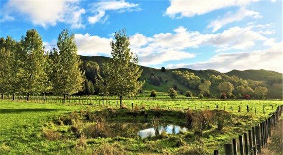 Mangaweka, New Zealand: View to Mt Huia farm
