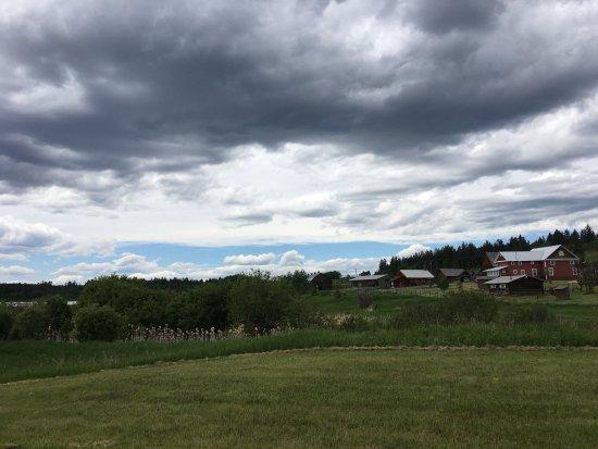 108 Mile Ranch, Canada: photo3.jpg