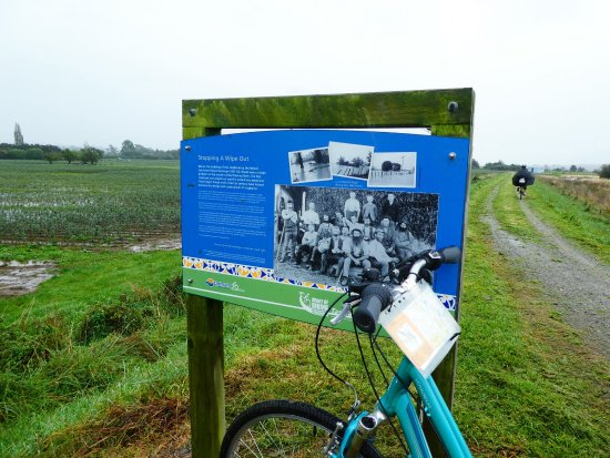 The Gentle Cycling Company: A few photos from our Nelson cycling holiday - atmospheric in the rain