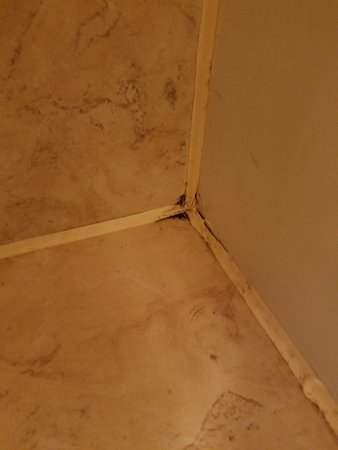 Round Barn Lodge: Bathroom not clean