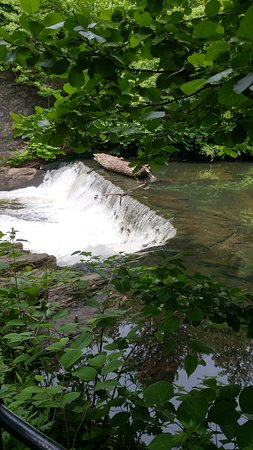 New York Botanical Garden: Waterfalls In The Botanical Garden
