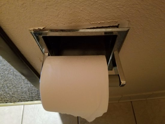 Polynesian Water Park Resort: broken toilet paper holder