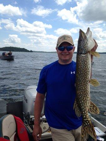 Perham, Minnesota: Fish caught on Big Pine Lake