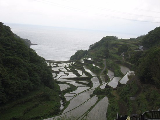 Genkai-cho, ญี่ปุ่น: 浜野浦の棚田