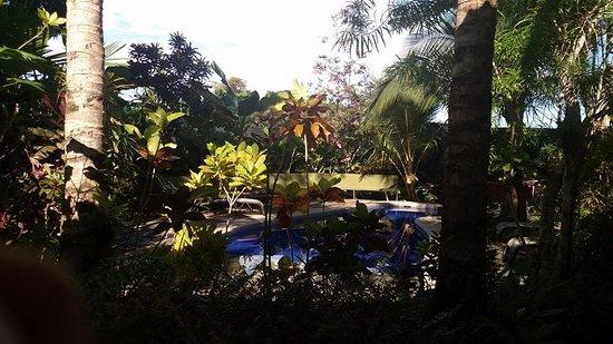 Villas Oasis-bild