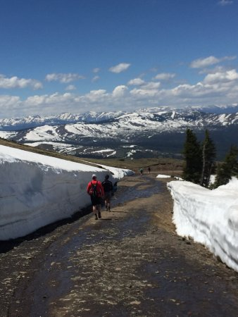 Mount Washburn Yellowstone National Park Wy Top Tips