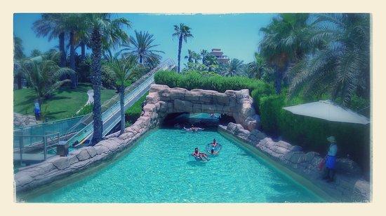Atlantis The Palm Photo Underwater Suite