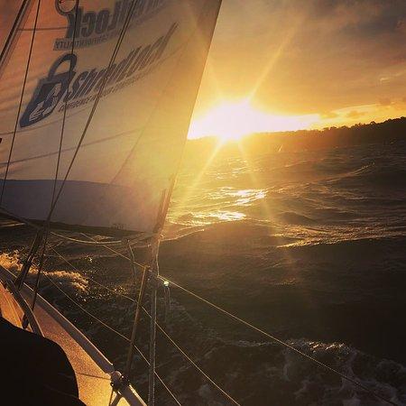 Champagne Sailing Sydney: Sunset sailing on Sydney Harbour