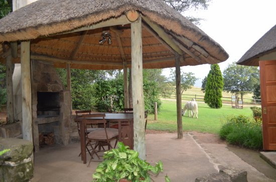 Bergville, South Africa: After a day of hiking nothing better than coming back for a braai!