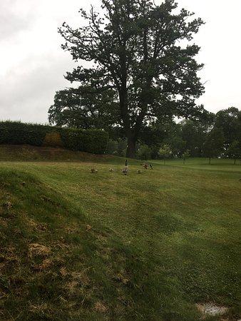 Pattingham, UK: Patshull Park Hotel Golf & Country Club