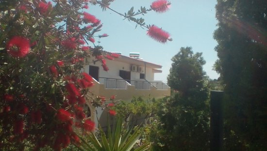 Yialis Apartments: The front gardens of these studios , beautiful shrubs and flowers...
