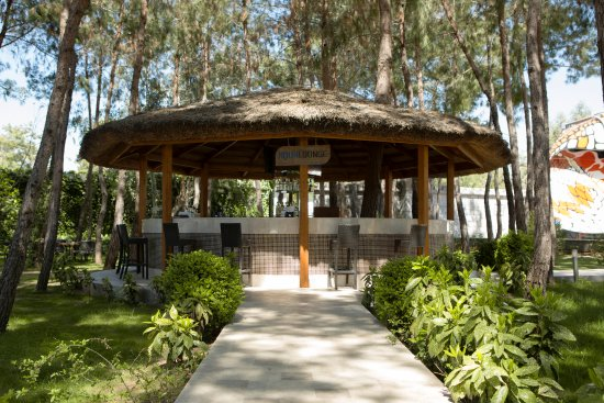 Maxx Royal Belek Golf Resort: Aqua Lounge Bar