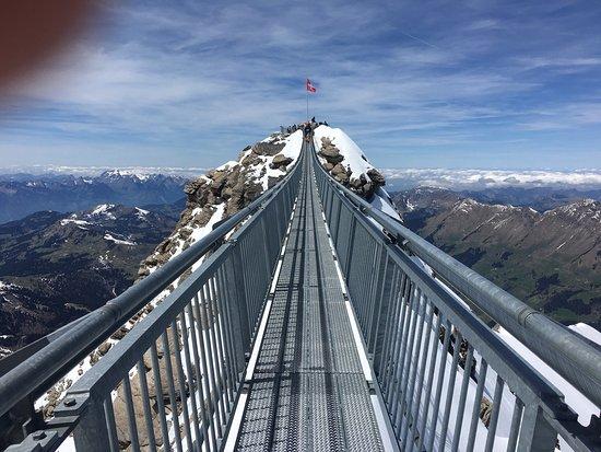 Les Diablerets, سويسرا: photo4.jpg