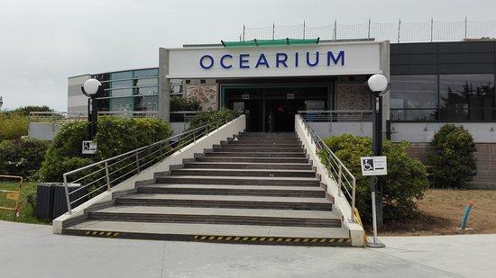 Ocearium du Croisic: IMG_20170605_133237_large.jpg