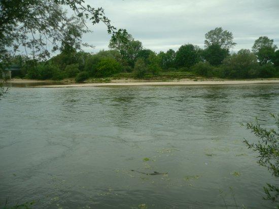 Chaussin, France: riviere a 100 m du camping l'été il y a une plage et départ des canoé avec le gérant