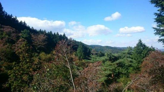 Mt. Miyaji