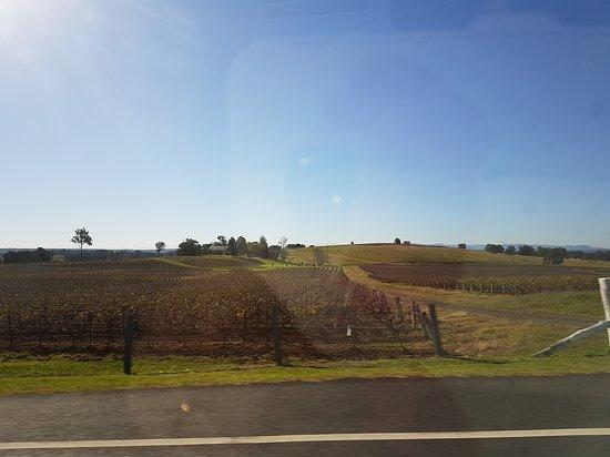 Hunter Valley Wine Tasting Tours : 20170526_134006_large.jpg