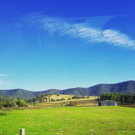 Hunter Valley Wine Tasting Tours : IMG_20170526_163035_760_large.jpg