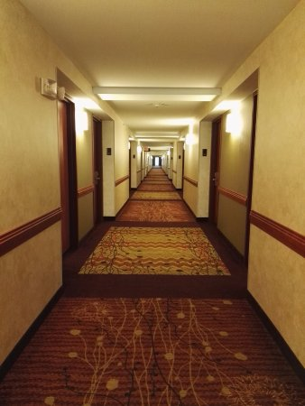 The hall picture of hilton garden inn houston the woodlands the woodlands tripadvisor for Hilton garden inn houston the woodlands