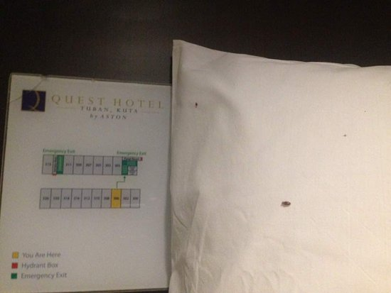 Quest Hotel Kuta: bed bugs
