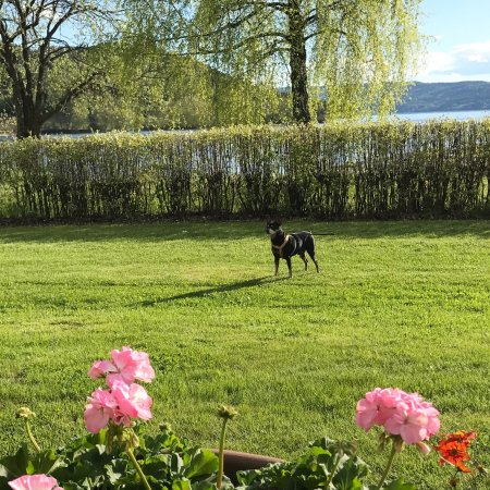 Gran Municipality, Norveç: photo0.jpg