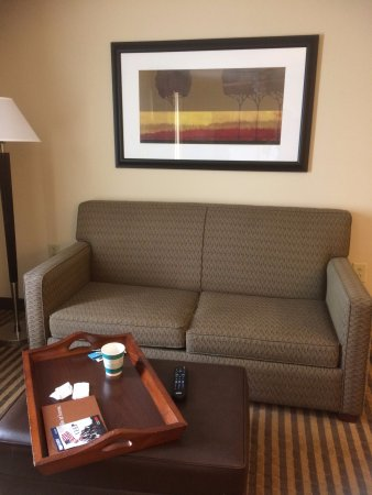 Homewood Suites by Hilton Macon - North: Couch