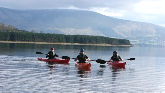 Segway Tours at the Blessington Lakes - Picture of CP