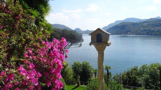 Parco Scherrer : Blick auf den Lago di Lugano