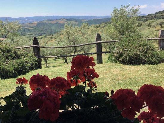 Agriturismo La Ghirlanda: photo1.jpg