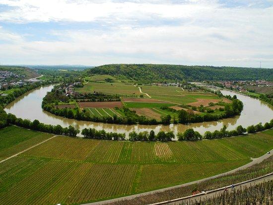 Zur Neckarschleife bei Hessigheim