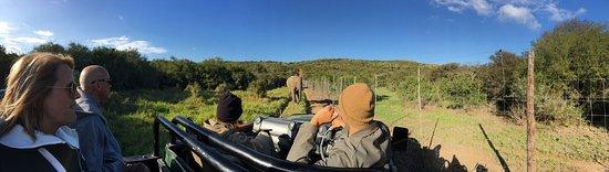 Кентон-он-Си, Южная Африка: photo1.jpg
