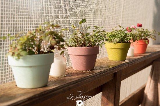 Petrignano, Italia: Un particolare del nostro splendido giardino estivo