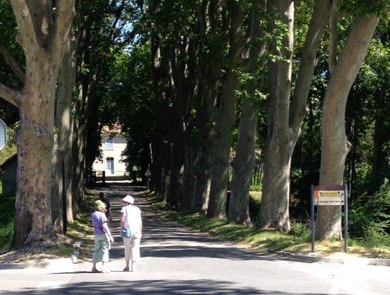 Le Mas de La Baou : Walking back from the coffee shop