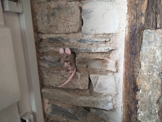 Bishops Castle, UK: 16th century timber with toy mouse in a recess of the wall!