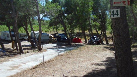Camping Le Bois De Pins