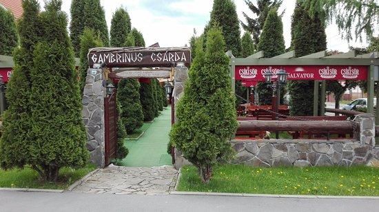 Miercurea-Ciuc, โรมาเนีย: The terrace