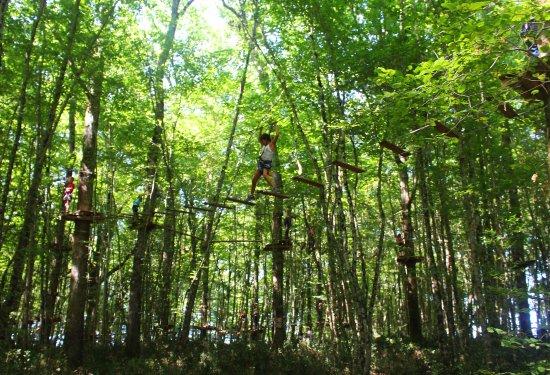 Saint Bris des Bois, Frankrike: parcours accrobranche