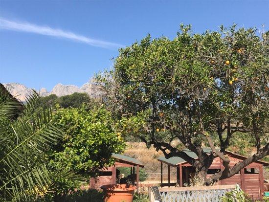 Rancho La Ofra: photo3.jpg