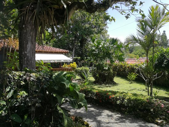 The beautiful gardens of Casa Marcellino