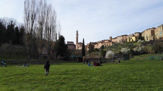 All'Orto de' Pecci: Vista di Siena