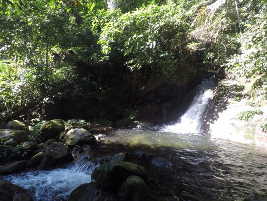 Poring, Maleisië: 1 minute walk from tents